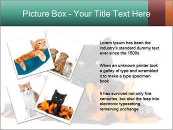 Black cat PowerPoint Template - Slide 23