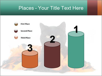 Black cat PowerPoint Template - Slide 65