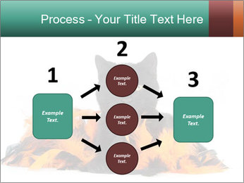 Black cat PowerPoint Template - Slide 92