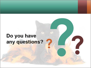 Black cat PowerPoint Template - Slide 96