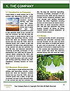 0000091780 Word Templates - Page 3