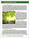 0000091780 Word Templates - Page 8