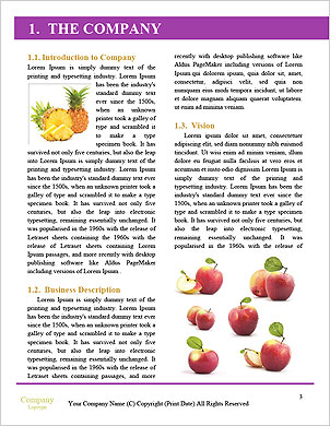 0000091782 Word Template - Page 3