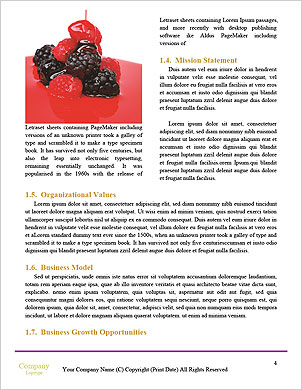 0000091782 Word Template - Page 4