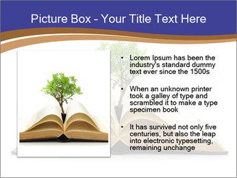 Tree growing PowerPoint Template - Slide 13
