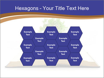 Tree growing PowerPoint Template - Slide 44