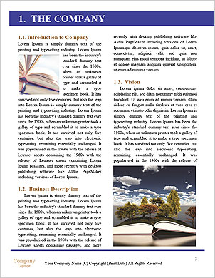 0000091783 Word Template - Page 3