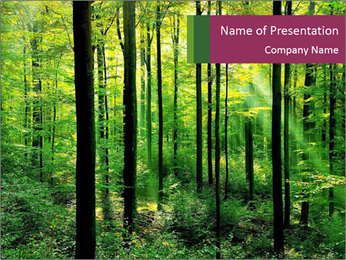 Fresh green forest PowerPoint Template