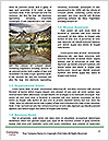 0000091789 Word Template - Page 4