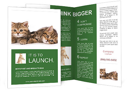 0000091790 Brochure Template