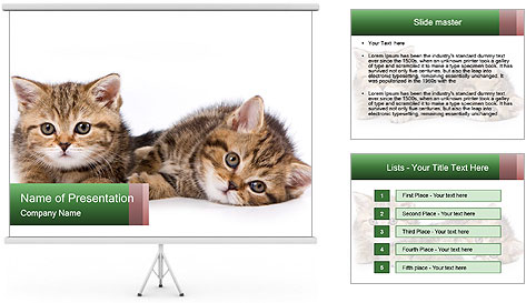 0000091790 PowerPoint Template