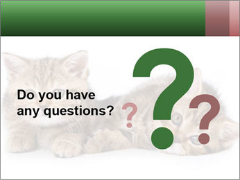 British kittens PowerPoint Templates - Slide 96