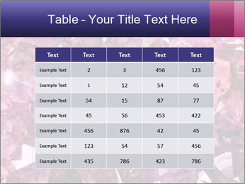 Natural amethyst PowerPoint Template - Slide 55