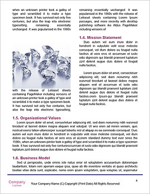 0000091791 Word Template - Page 4