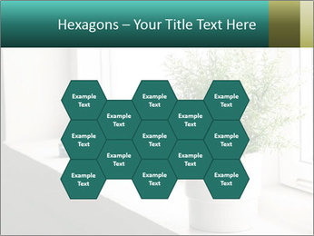 Home flower PowerPoint Templates - Slide 44