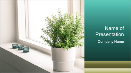 Home flower PowerPoint Template