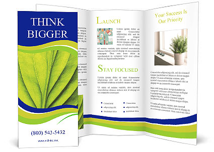 0000091802 Brochure Template