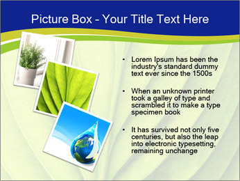 Leaf close-up PowerPoint Template - Slide 17