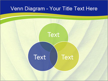 Leaf close-up PowerPoint Template - Slide 33