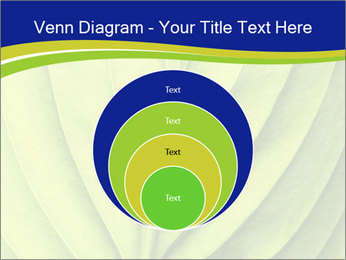 Leaf close-up PowerPoint Template - Slide 34