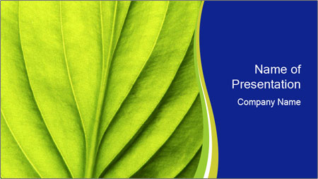 Leaf close-up PowerPoint Template