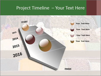 0000091804 PowerPoint Template - Slide 26