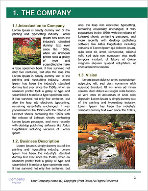 0000091805 Word Template - Page 3