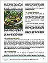 0000091805 Word Templates - Page 4