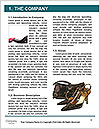 0000091807 Word Templates - Page 3