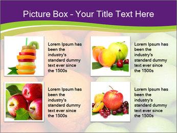 0000091817 PowerPoint Template - Slide 14