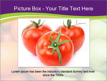 0000091817 PowerPoint Template - Slide 15