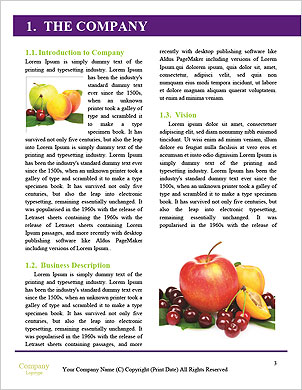 0000091817 Word Template - Page 3