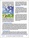 0000091827 Word Template - Page 4