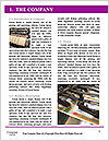 0000091831 Word Template - Page 3