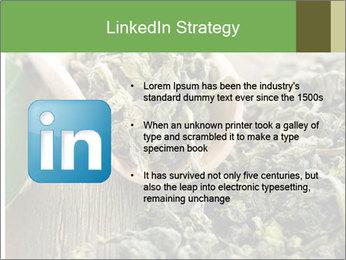 Green Tea PowerPoint Template - Slide 12