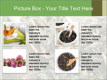Green Tea PowerPoint Template - Slide 14