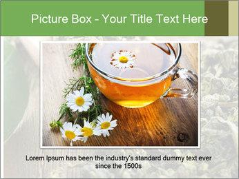 Green Tea PowerPoint Template - Slide 15