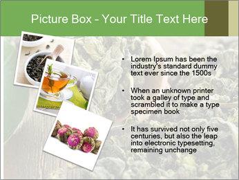 Green Tea PowerPoint Template - Slide 17