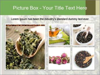 Green Tea PowerPoint Template - Slide 19