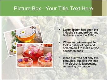 Green Tea PowerPoint Template - Slide 20