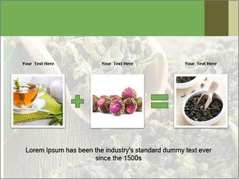 Green Tea PowerPoint Template - Slide 22