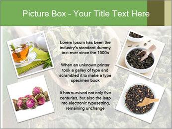 Green Tea PowerPoint Template - Slide 24