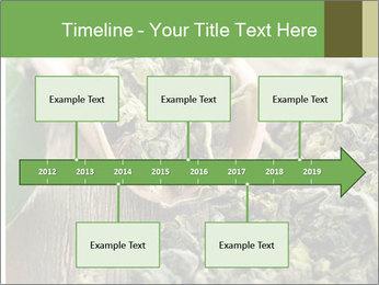 Green Tea PowerPoint Template - Slide 28