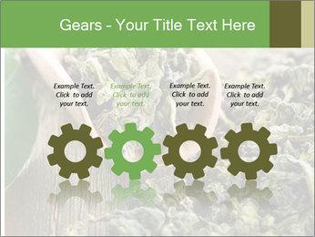 Green Tea PowerPoint Template - Slide 48