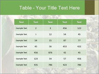 Green Tea PowerPoint Template - Slide 55