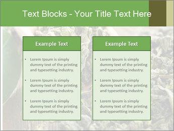 Green Tea PowerPoint Template - Slide 57