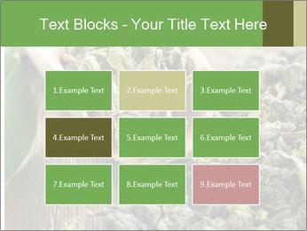 Green Tea PowerPoint Template - Slide 68