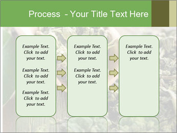 Green Tea PowerPoint Template - Slide 86