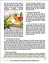 0000091833 Word Templates - Page 4