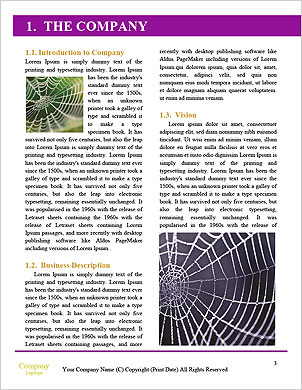 0000091834 Word Template - Page 3